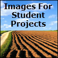 images 4 students image